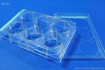 TC处理96孔平底全白发光板,灭菌发光板