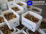環保保鮮蔬菜箱鈣塑瓦楞紙箱-惠州欣品鈣塑包裝廠