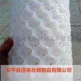 现货塑料网,包塑塑料网,白色塑料网