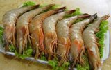 燒蝦粉青島日昇昌現貨供應 烤蝦粉 風味蝦粉