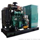 新盛安40KW燃气发电机组