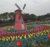 厂家直销定制 彩色装饰风车 户外装饰道具