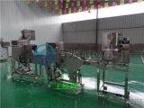 全自动丸子生产线|狮子头生产线|无衣香肠生产线