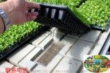 汉明移动苗床能用多少年 苗床网专业生产厂家