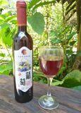 葡萄酒红酒批发果酒批发贴牌加工天然自酿散酒果酒礼品酒全国招商