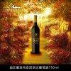 南非葡珞帝皮诺塔吉2016干红葡萄酒  F-0300001