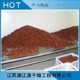 红枣烘干带式干燥设备 DW系列带式干燥机 带式干燥设备 烘干设备