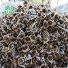 雲南滿澤辣木籽的味道代表什麼,辣木籽味道代表症狀