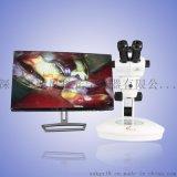 西尼科 高倍解剖显微镜 高变倍 大景深 解剖显微镜