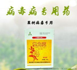 桃树缩叶病防治用药果树病毒专用