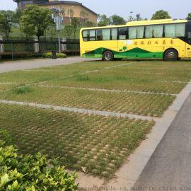 供應福建高品質生態井子植草磚