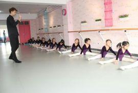 遼寧省舞蹈教室地膠廠家直銷 價格實惠 業內領跑者