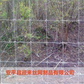 鍍鋅牛欄網,高原養殖草原網,直銷圍欄網