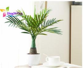 仿真葵树绿植 仿真棕榈树盆栽