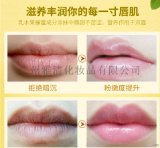 广州雅清化妆品有限公司定制润唇膏淡化唇纹补水滋润防干裂男女可用