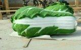 农业园生态园广场仿真果蔬雕塑摆件玻璃钢雕塑大白菜