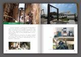 鋼板樁、綠化工程、苗木、靜壓樁 旋挖樁