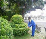 广州园林绿化公司 专业的清洁保洁公司 广州市辉洋物