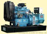 600KW柴油发电机组12V138BZLD潍坊华利上柴股份发电机