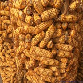 储存玉米菱形钢板网 大型粮仓网