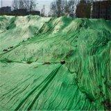市政專用四針綠色蓋土網