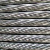 河北销售商家供应通讯钢绞线