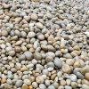【2-3公分鹅卵石厂家】_鹅卵石价格_重庆荣顺。