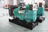 康明斯24KW柴油发电机组 中美合资运行安全可靠PT电子油泵。