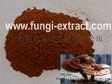 上海生產優質靈芝破壁孢子粉