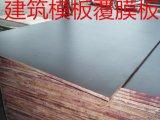 东南亚专用建筑模板/覆膜板/建筑模板/防滑覆膜板/18mm
