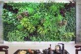 东莞仿真植物厂供应仿真植物墙 室内植物墙批发 仿真园林景观 艺术景观雕塑