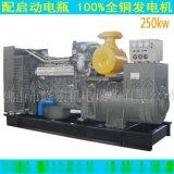 250kw潍柴发电机组,山东潍坊潍柴250千瓦发电机保证全新质保一年(配无刷发电机)