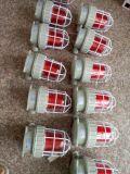 防爆声光报警器 BBJ51-X防爆声光报警器