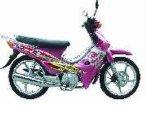 摩托车TM110-2