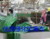 公路隔离带绿篱过冬保温防寒布供应商