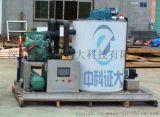 ZP-035 深圳片冰机、出海商用片冰机等制冰设备.