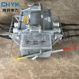FZW28-12F/630A户外高压真空分界负荷开关