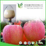 提取物厂家供应苹果皮提取物根皮甙98% 美白护肤 化妆品原料