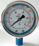 耐震双刻度压力表YN-60/75/100
