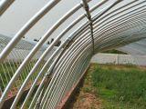 溫室大棚骨架的安裝程式