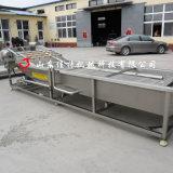 广州蔬菜清洗加工生产线