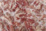 冻品牛肉进口报关 冻品类进口清关 货运代理至中国
