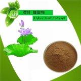 荷叶提取物 天然荷叶粉 10:1荷叶浓缩粉 清热解暑凉血止血