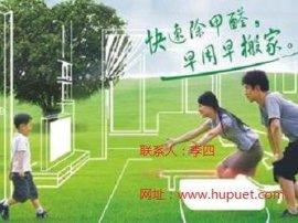 重庆虎普公司除甲醛方法