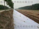 針刺滌綸短纖無紡布200g/㎡廠家直銷