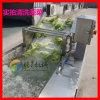 蔬菜瓜果清洗机 去杂气泡清洗机 气泡翻滚果蔬清洗机 腾昇供应