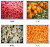 中国冷冻水果,冷冻蔬菜生产厂家