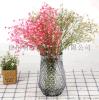 歐式簡約鳳梨玻璃花瓶花器插花家居客廳臥室擺件現代水培裝飾擺件