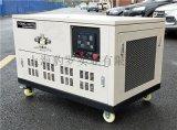静音10千瓦汽油发电机厂家双缸风冷款