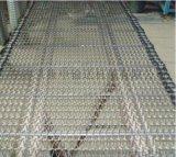康申机械不锈钢网带 链网输送带